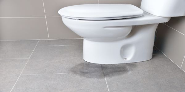 Toilet Leaking at The Base?